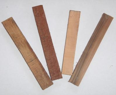 10 Pen Blanks in Timbers of your choice