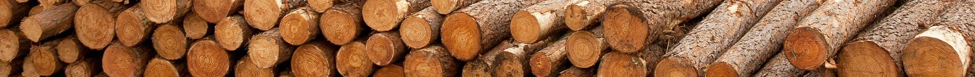 Tasmanian Native Timbers