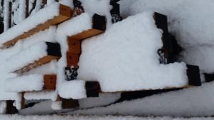 Snow on the Huon Pine!